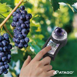 Измеритель показателя Brix в винограде PAL-HIKARi 2